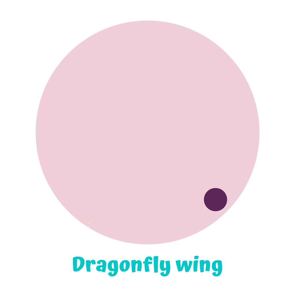 EN-dragonflywing.png